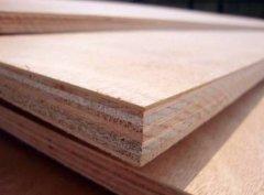 常用的板材有哪些种类?
